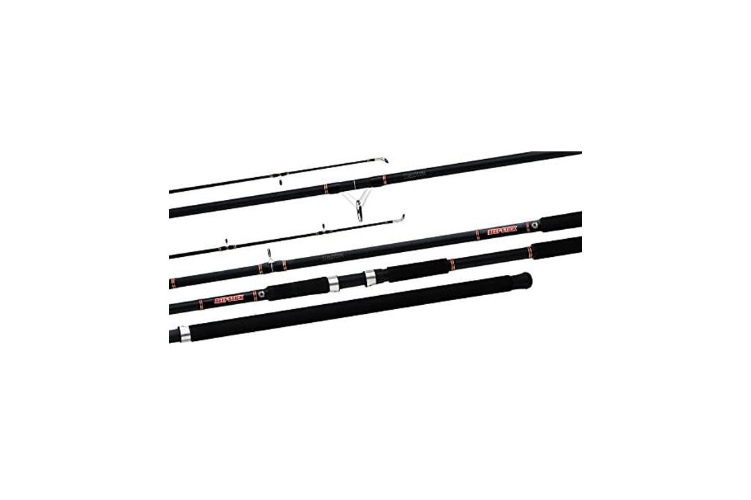 Daiwa BFSF1202MHRS Beefstick Surf Spin Rod, 12-Feet, 2-Piece