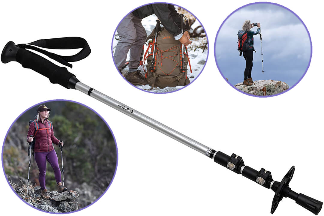 ALPS Mountaineering 7897423 Journey Trekking Pole